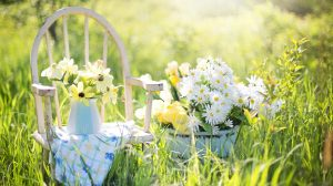 4 Tips to Tackle your Spring Cleaning – Living Peace Tuesday Tip