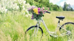 Maximizing Space and Organizing Bicycles – Living Peace Tuesday Tip