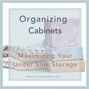 Bathroom Kitchen Organizing Under Sink Storage