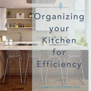 Kitchen Organizing Cabinet Appliances Professional Organizing