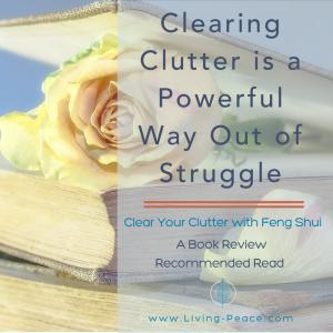 Home Organizing Clutter Struggle Declutter