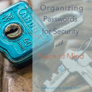 Protecting Passwords