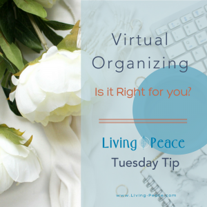 Virtual Professional Home Organizing